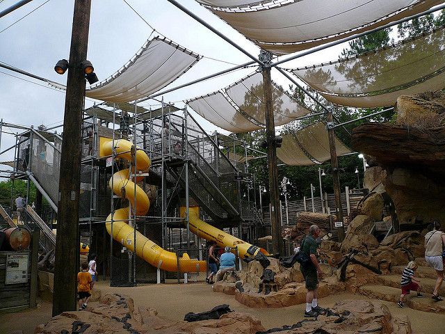Bone Yard Animal Kingdom