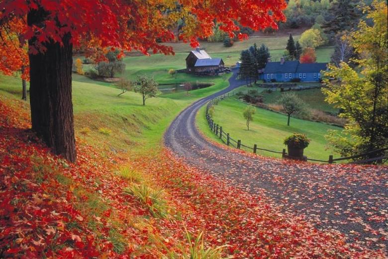 Fall-foliage-Vermont-