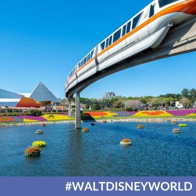 Is Walt Disney World Reopening The EPCOT Monorail?