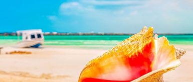Revised COVID-19 Travel Requirements for Turks and Caicos.