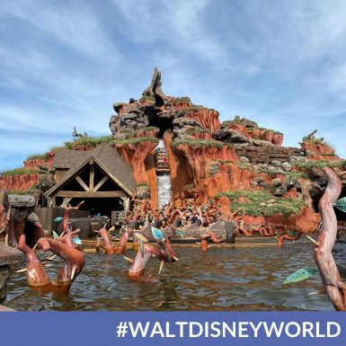 Magic Kingdom Guests Should Not Expect to See Splash Mountain Reimagining Any Time Soon