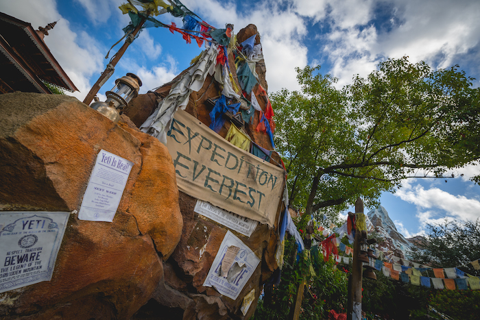 Animal Kingdom's Expedition Everest To Be Closed In 2022